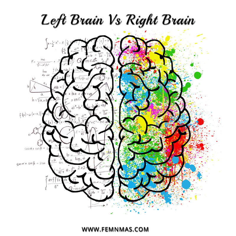 Left Brain v/s Right Brain: Balance Both the Hemispheres